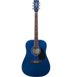 Other Types of the Best Acoustic Guitar in Review