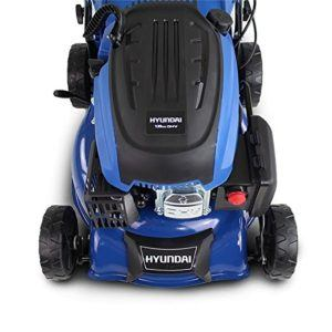 The following important pointers must be paid attention to when purchasing a Riding lawn mower review winner
