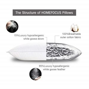 Best Pillow Types in Reviews