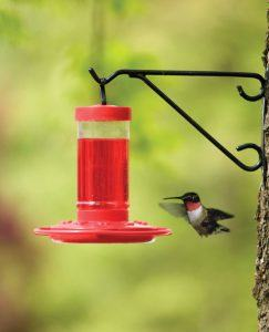 Advantages from a hummingbird feeder comparison review