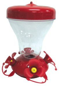 The best adviser from a hummingbird feeder reviews