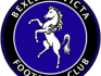 Bexley Invicta FC was established in January 2011 as an all-inclusive club