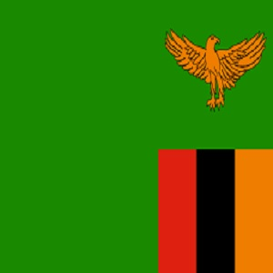 Sentences of 14 years can be issued for those convicted of same-sex sexual activity in Zambia