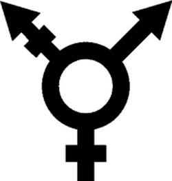 The legislation will allow trans people to legally change their gender.