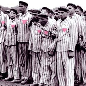 The nazi persecution of the homosexuals
