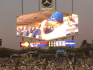 The gay couple were featured on the kiss cam