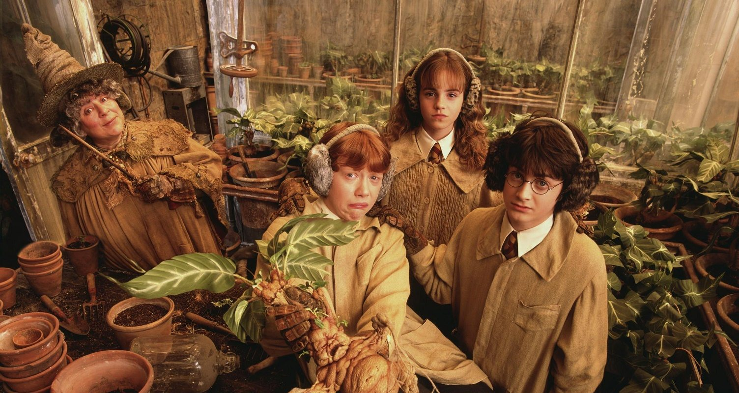 Harry Potter actress: My parents forced me to 'swear on the Bible' not to be a lesbian