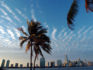 Skyline of Miami (ROBERTO SCHMIDT/AFP/Getty Images)