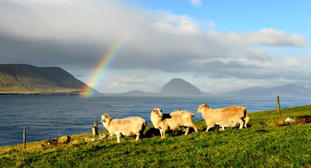 Faroe Islands (Getty)
