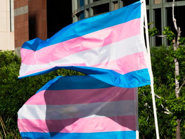 Trans pride flags