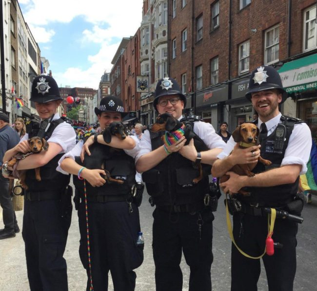 Police officers holding dogs at Pride in London 2017