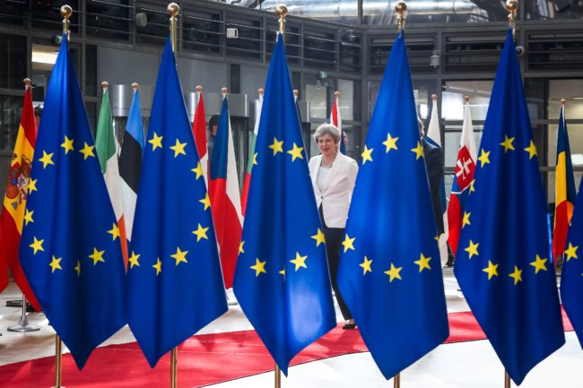 Theresa May and EU Flags