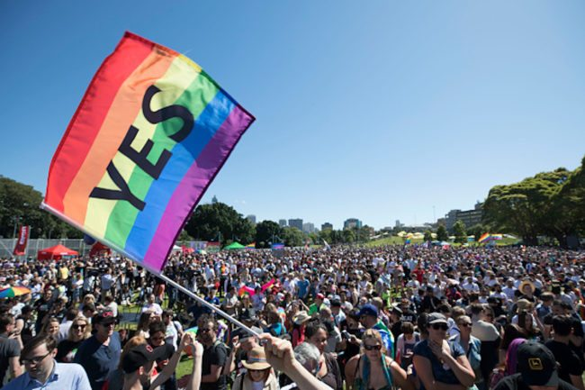 Thousands gather in Prince Alfred Park in Sydney for the result of the vote (Photo by Cole Bennetts/Getty Images)