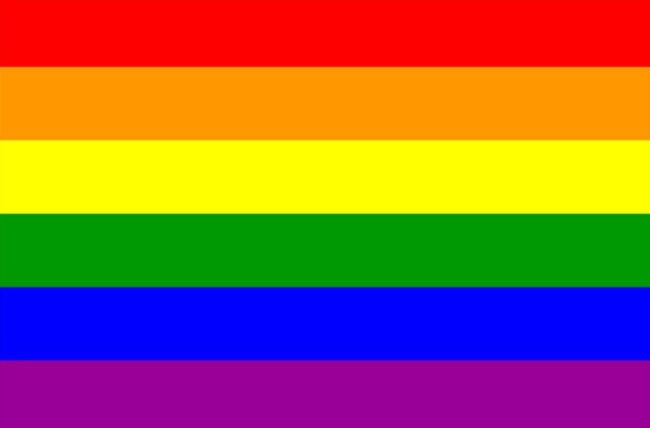 all of the flags you might see at pride and what they mean pinknews
