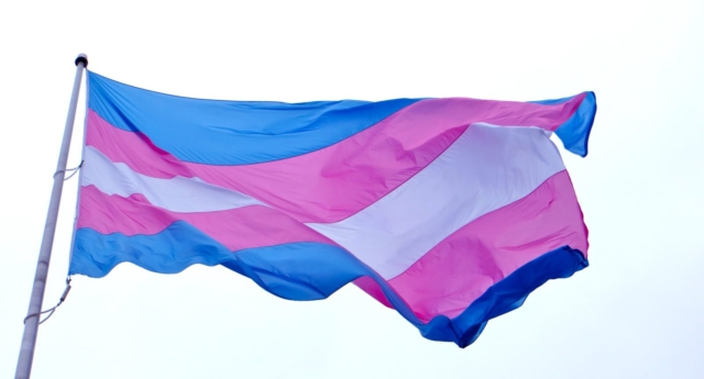 The trans flag, an international symbol of recognition and pride (Creative Commons)