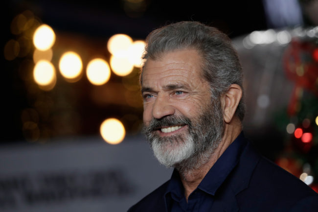 Mel Gibson, actor accused of homophobia
