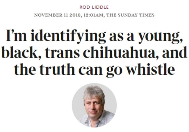 Rod Liddle's column about transgender people