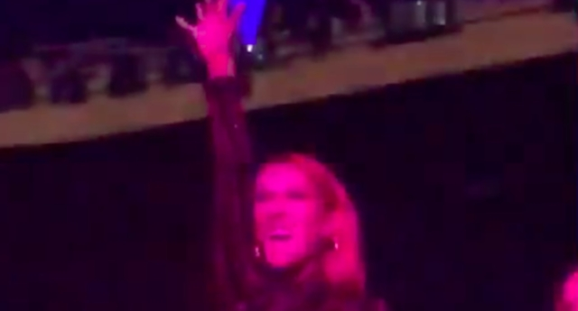 A video has gone viral showing Celine Dion performing some energetic dance moves at a Lady Gaga concert. (gagadaily/Twitter)