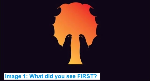 What did you see first when you looked at this image? (Playbuzz)