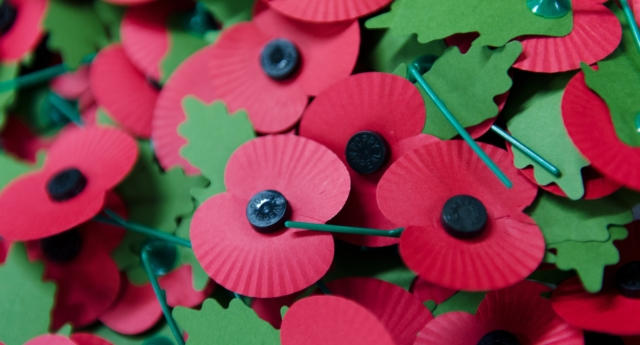 A pile of the iconic red emblem of the British Legion's annual poppy appeal sits on a work bench at the company headquarters in Richmond, London on November 7, 2012 in London, England.  (LEON NEAL/AFP/Getty)
