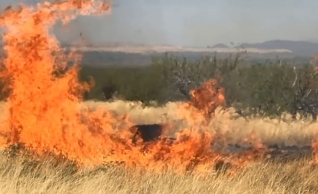 A screenshot from a video of the gender reveal party in Arizona which caused a huge wildfire