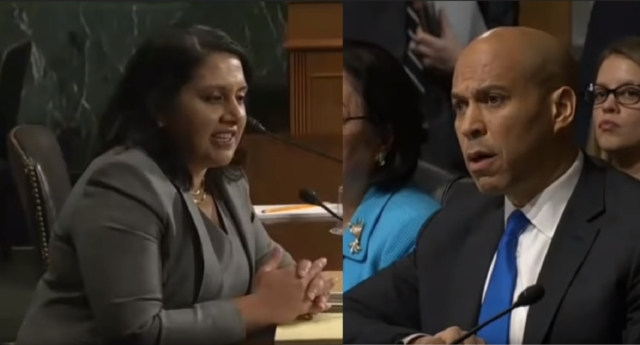 Conservative lawyer Neomi Rao was challenged by Cory Booker over her criticism of the ruling that legalised gay sex (C-SPAN)