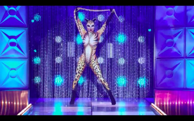RuPaul's Drag Race kitten Trinity the Tuck