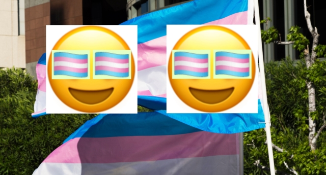 Transgender Pride flag emojis are now available to a select section of the population. (ROBYN BECK/AFP/Getty and Emojipedia)