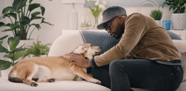 Fab Five: Karamo Brown of Queer Eye's Fab Five make over rescue dog Lacey