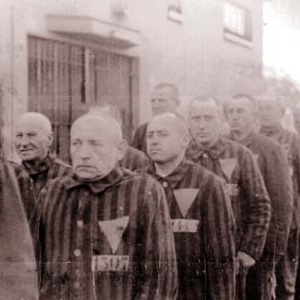 Over 50,000 gay people were arrested and imprisoned by the Nazis