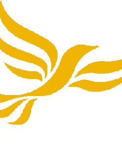 Liberal Democrats voted in favour of supporting equal marriage