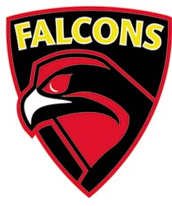 The Falcons play in the Gay Football Supporters' Network (GFSN) national league, the world's only gay and gay friendly national league.