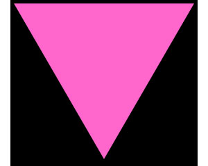 the holocaust symbols for gay