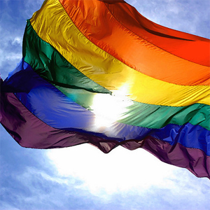 The petition calls for Team GB athletes to wear rainbow colours in solidarity with the LGBT community in Russia