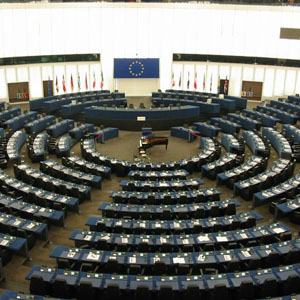 The European Parliament has adopted a resolution which condemns the laws